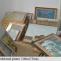 muzee timis tablouri igrasie