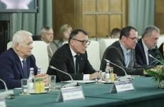 Delegatia Japoniei la Guvern - Paul Stanescu