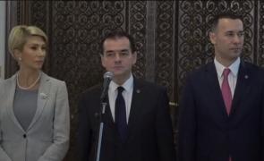 ludovic orban PNL consultari