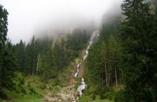 munte, cascada, pădure, natură