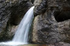 cascada, natură, apă, pădure