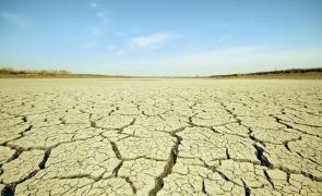 seceta desertificare desert