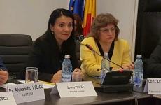 Sorina Pintea conferinta