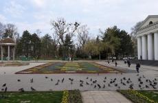 flori chisinau