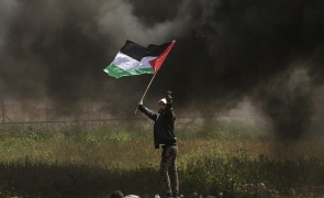 protestatar Fasia Gaza
