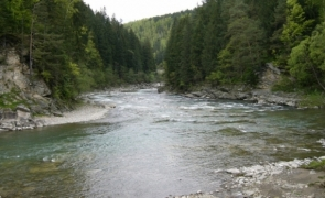 râu, apă poluată