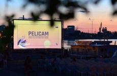pelicam