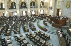 senat proteste