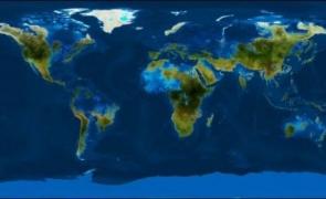 lumea ocean