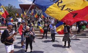 protest diaspora universitate