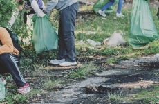 curatenie ecologizare