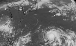 taifun jedi