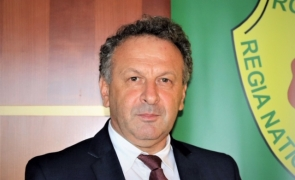 Gheorghe Mihăilescu