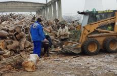 lemne sector 4