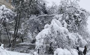 copac prabusit