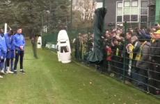 Nantes, jucători, fani