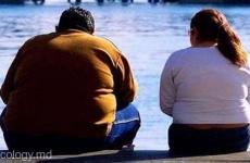 obez gras