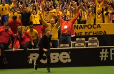 Simona Halep, teren, Fed cup