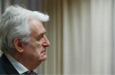 Radovan Karadzici