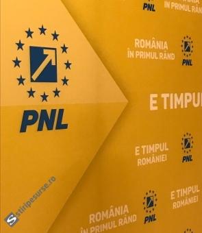 PNL siglă