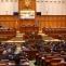 parlament vot plen camera deputatilor