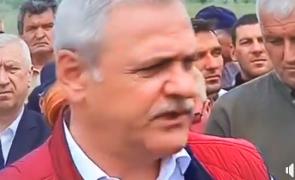 Dragnea Dabuleni