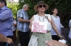 protest Cotroceni Dragnea