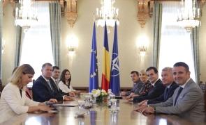 Klaus Iohannis consultari PNL