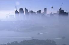 sydney ceata