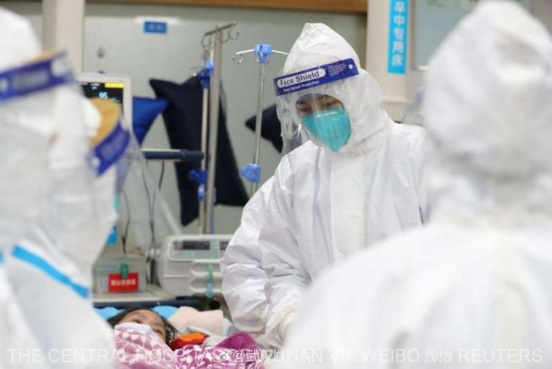 doctori virus coronavirus