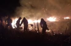 incendiu tulcea stuf