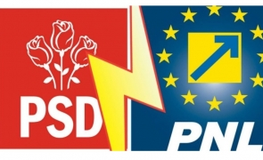 PNL vs. PSD