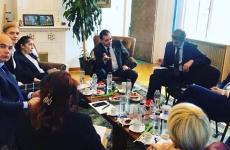 sedinta PNL Orban Rares Gorghiu