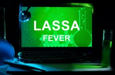 lassa fever febra Lassa