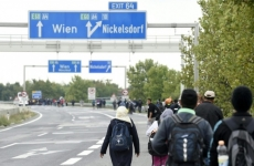Nickelsdorf granita