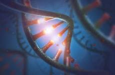 ARN mesager