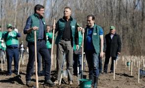 Iohannis Orban Alexe plantare copaci