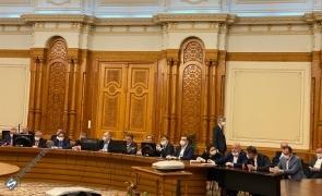 parlamentari măști