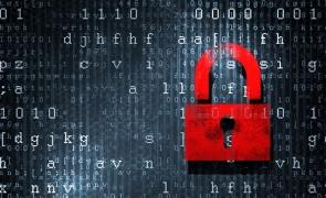 suport cibernetic