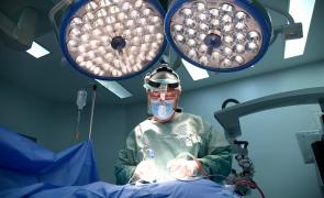 dr palii
