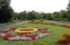 parcul botanic timișoara