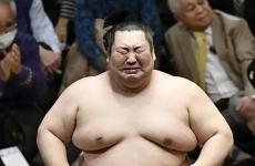 Luptator sumo