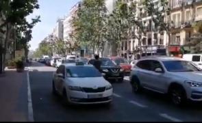 protest masini