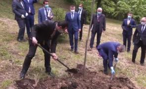 Ludovic Orban copac