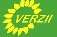 Partidul Verde verzii