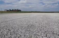 lac secat