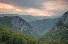 Parcul national Domogled padure munte