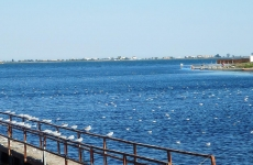 lacul techirghiol