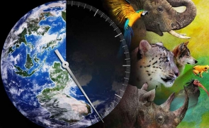 extinctie animale