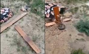 cimitir vandalizat galati